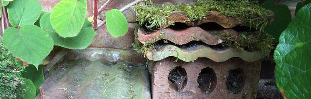Debbie_Cooke_Creative_Garden_Design_First_Floor_Wildlife_Welcome