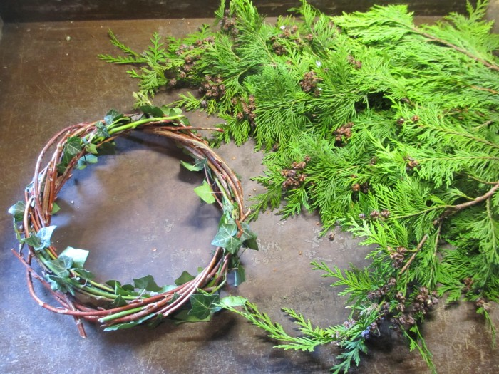 Christmas_Bird_Feeder_Wreath_Ring_and_Conifer_Debbie_Cooke