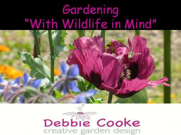 Gardening_With_Wildlife_in_Mind_Garden_Speaker_DebbieCooke.com